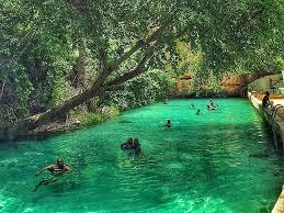 YANKARI National Park